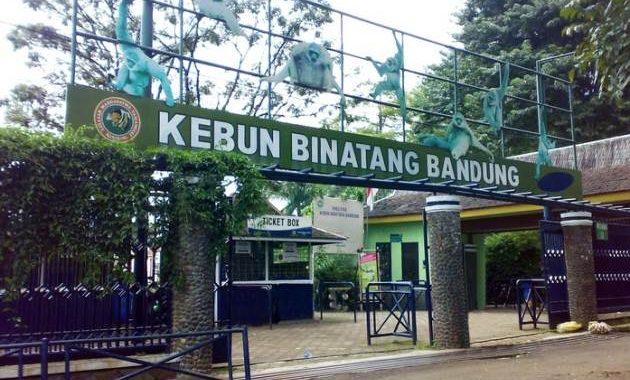 Wisata Kebun Binatang di Bandung