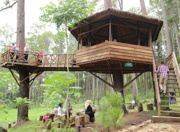 Taman Hutan Pocut Meurah