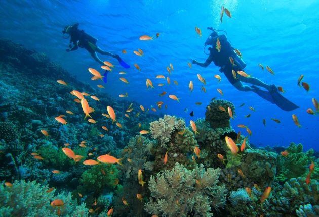 Halmahera, Wisata Indonesia di Maluku Utara