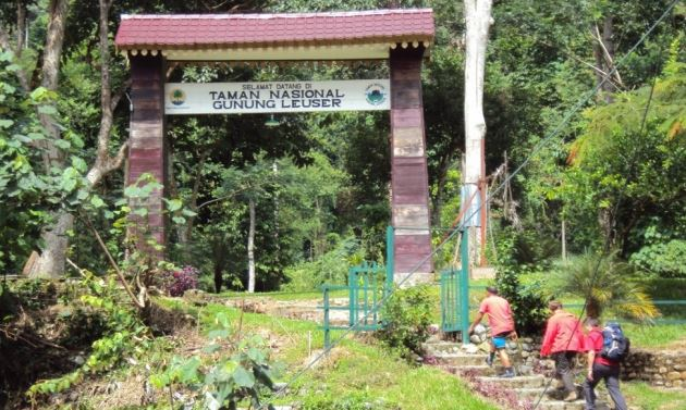 Taman Nasional Gunung Leuser, Sumatera