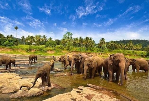Taman Nasional Way Kambas, Objek Wisata Lampung